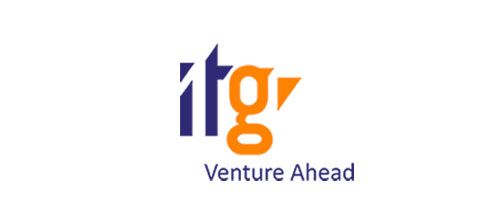 IT Group, Inc.